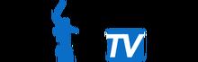 Volgogradskoe Delovoe Televidenie / ООО «ВДТВ»