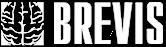 Brevis Audiovideo