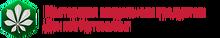 ООО «Мастерская визуальных продуктов Дениса Артемьева» / ООО «Мастерская ДЕНИСА Артемьева»